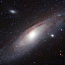 M31,                                Rino