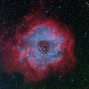 Rosetta Nebula,                                Xesco