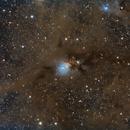 NGC1333,                                Manel Martín Folch