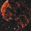 IC 443 Jellyfish Nebula,                                Doug Summers