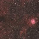 Cocoon Nebula IC 5146,                                Scott Homstead