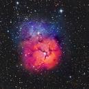 Trifid Nebula RGB Test - 24 minutes each channel :-),                                Daniel Nobre