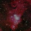 NGC 2264,                                Horst Twele
