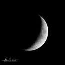 Moon first,                                Adam Cartwright