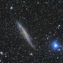 NGC4945 VC200L,                                Richard Muhlack