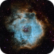 NGC2244 Rosette Nebula,                                Rich
