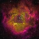 NGC 2244 Rosette Nebula,                                Frank Colosimo