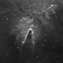 Cone Nebula (NGC 2264) in Ha,                                Richard Pattie