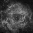 Rosette Nebula,                                Matthias Steiner