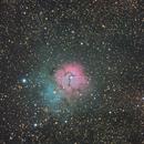 M20 - Trifid Nebula,                                neptun