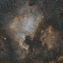 NGC 7000,                                PhotonCollector