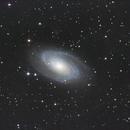 M81 Galaxy,                                Ray Heinle