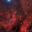 IC 1318,                                RichardBoudreau