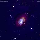 ngc3077 galassia nell'orsa maggiore                                   distanza 40 milioni   A.L.,                                Carlo Colombo