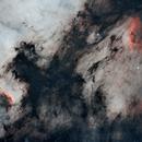 Cygnus Wall and Pelican Nebula,                                Haldema