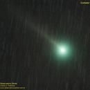 C/2019 U6 Lemmon (comet),                                Carlos Alberto Pa...