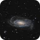 NGC 5033,                                Lorenzo Siciliano