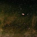 M81 Bode's and M82 Cigar Galaxies in the IFN,                                Gilbert Ikezaki