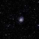 Messier 101 (NGC 5457) - Pinwheel Galaxy,                                Duarte Silva