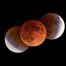 Lunar Eclipse,                                Masahiro Takahashi