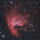 Pacman Nebula,                                Norman Revere