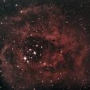 Rosette Nebula,                                CanuckAstro