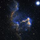 GHOST NEBULA IC63 in SHO,                                Brian Meyerberg
