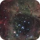 Rosette_Nebula,                                shane