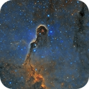 The Elephant Trunk Nebula,                                Dan Pelzel