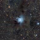 NGC7023,                                Roberto Barcellona