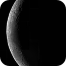 3 Day Old Crescent - Mosaic,                                Seldom