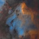 [starless ver.] Pelican Nebula,                                YoungDae-Kim