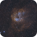 The Tadpoles of IC 410,                                cclark