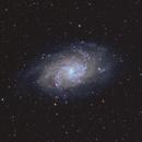 Messier 33 Triangulum or Pinwheel Galaxy,                                Anthony Quintile