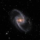 NGC 1365,                                Lee Borsboom