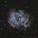 The Rosette Nebula, Caldwell 49,                                Luis Armando Gutiérrez Panchana