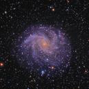 The Fireworks Galaxy NGC 6946,                                rveregin