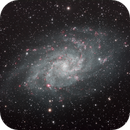 M33 Triangulum Galaxy  HaLRGB,                                Richard Pattie
