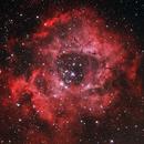 Rosette Nebula 22 feb 2014,                                ReneW
