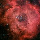 NGC 2237 HaRGB,                                Mario Richter