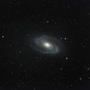 M81 und M82,                                Georg N. Nyman