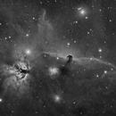 DEEP SKY WEST REMOTE OBSERVATORY - Test Image #2 - Horse Head Nebula in Luminance,                                Deep Sky West (Lloyd)