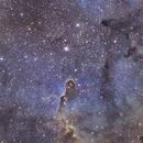 IC1396 - Elephant Trunk Nebula in SHO narrowband,                                TomBramwell