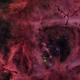 Rosette Nebula NGC2237 and open Cluster NGC2244 -  NGC2238 NGC2239  NGC2246,                                Michel Lakos M.
