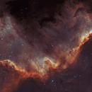 Cygnus Wall in bicolor,                                Lars Stephan