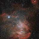IC2948 - Running Chicken Nebula,                                RugbyRene