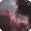 North America Nebula (NGC 7000),                                Nejc Ucman