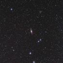 NGC 7331,                                Rino