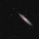 NGC 253 crop,                                Mario Richter