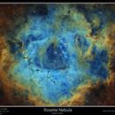 Rosette Nebula,                                rflinn68